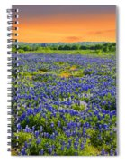 Bluebonnet Sunset  Spiral Notebook