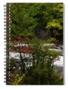 Bog River Spiral Notebook