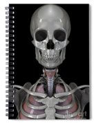 Bones Of The Head Spiral Notebook