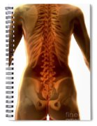 Bones Of The Upper Body Female Spiral Notebook
