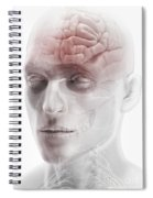 Brain And Nerves Of The Head Spiral Notebook