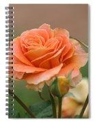 Brass Band Roses Spiral Notebook