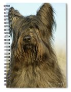 Briard Dog Spiral Notebook