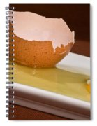 Broken Brown Egg Spiral Notebook