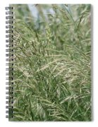 Brome Grass In The Hay Field Spiral Notebook