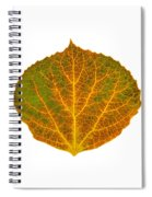 Brown Green Orange And Yellow Aspen Leaf 1 Spiral Notebook