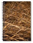 Brown Reeds Spiral Notebook