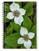 Bunchberry Spiral Notebook