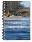 Bunches Of Eagles Spiral Notebook