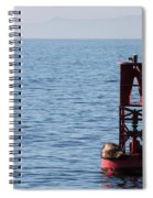 Buoy Sea Lions Spiral Notebook