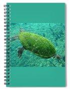 Busch Turtle  Spiral Notebook