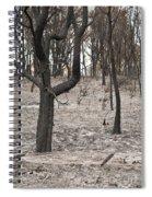 Bush Fire Spiral Notebook
