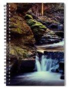 Bushkill Falls Spiral Notebook