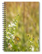 Butterfly In A Field Of Flowers Spiral Notebook
