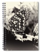 Butterfly In Black And White  Spiral Notebook
