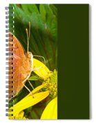 Butterfly Mimicry Spiral Notebook