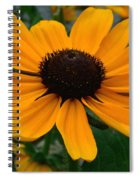 Butterscotch Daisy Spiral Notebook