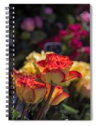 Buy Me A Rose Spiral Notebook
