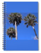 Cabbage Palms Spiral Notebook