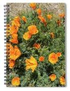 Californian Poppy Eschscholzia Spiral Notebook