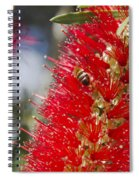 Callistemon Citrinus - Crimson Bottlebrush Spiral Notebook