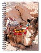 Sitting Camel Spiral Notebook