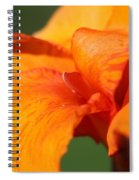 Canna Lily Named Wyoming Spiral Notebook