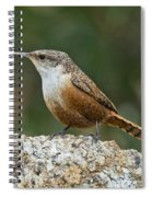 Canyon Wren Spiral Notebook