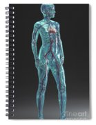 Cardiovascular System Female Spiral Notebook