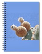Cardon Cactus Fruit Spiral Notebook