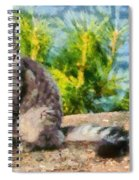 Cat By The Seaside Spiral Notebook