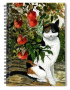 Cat On The Patio Spiral Notebook