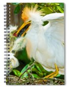 Cattle Egret With Young In Nest Spiral Notebook