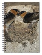 Cave Swallows Spiral Notebook