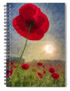 Celebrate The Day Spiral Notebook