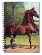 Ch. Merchant Prince Spiral Notebook