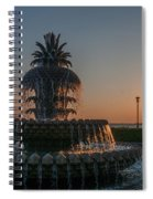 Pineapple Fountain Charleston Sc Sunrise Spiral Notebook
