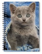 Chartreux Kitten Spiral Notebook