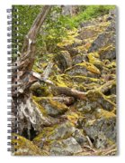 Cheakamus Rainforest Debris Spiral Notebook