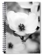 Dogwood Blossom Spiral Notebook