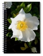 Cherokee Rose Spiral Notebook