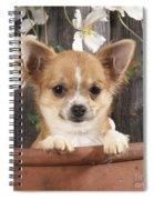 Chihuahua Dog In Flowerpot Spiral Notebook