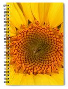 Chipmunk's Peredovik Sunflower Spiral Notebook