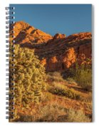 Cholla Cactus And Red Rocks At Sunrise Spiral Notebook