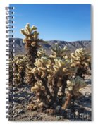 Cholla Cactus Spiral Notebook