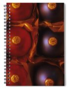 Christmas Ornaments In Box Spiral Notebook
