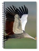 Close-up Of Grey Crowned Crane Spiral Notebook