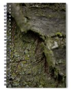 Closeup Of Bark Covered In Lichen Spiral Notebook
