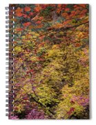 Colorful Leaves On A Tree Spiral Notebook