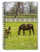 Colt Spiral Notebook